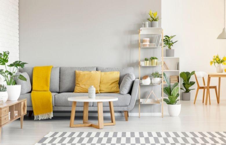 Plantas para Apartamento   westwing.com.br