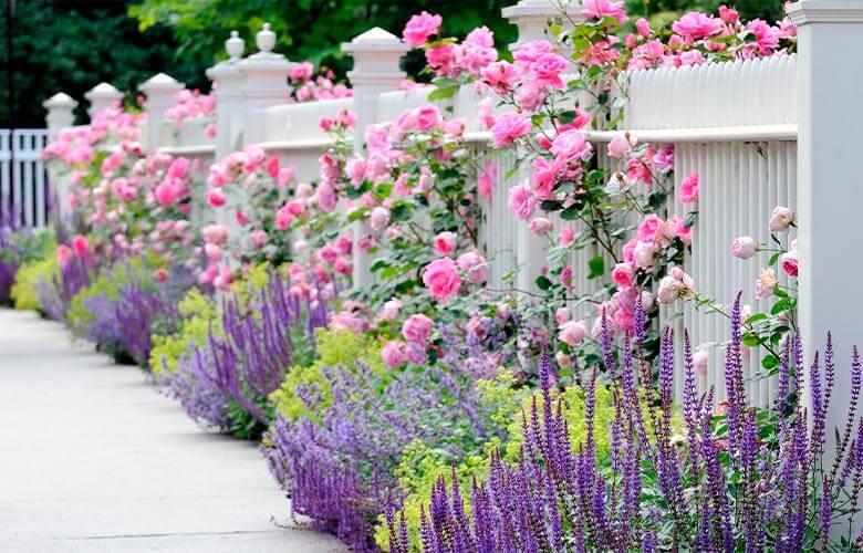 Cerca para Jardim | westwing.com.br