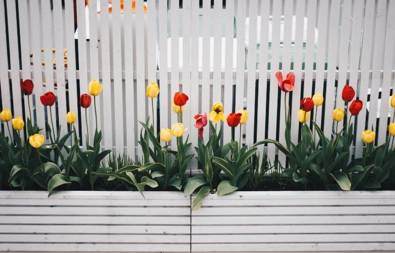 Jardim Colorido | westwing.com.br