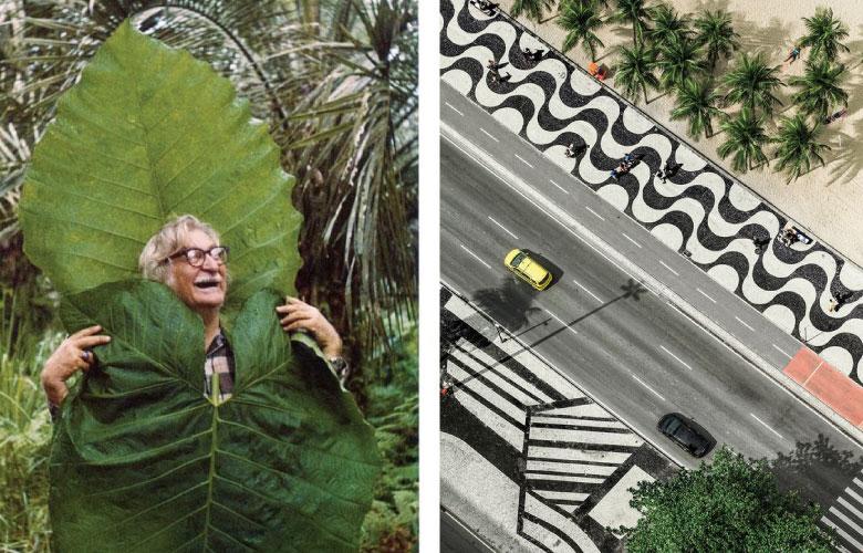Roberto Burle Marx   westwing.com.br