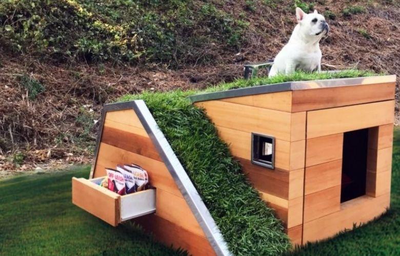 Casa Sustentável para Animais de Estimação | westwing.com.br
