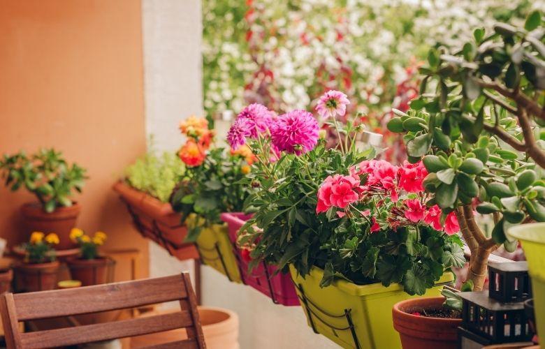 Flores na Varanda | westwing.com.br