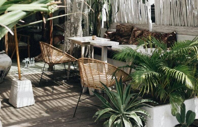 Plantas para Terraço | westwing.com.br
