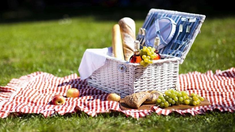 Cesta de Piquenique para Dia dos Namorados com frutas, pães, vinhos e toalha xadrez | westwing.com.br