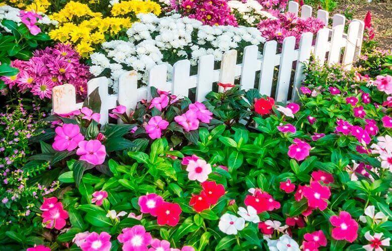 Flores de Verão   westwing.com.br