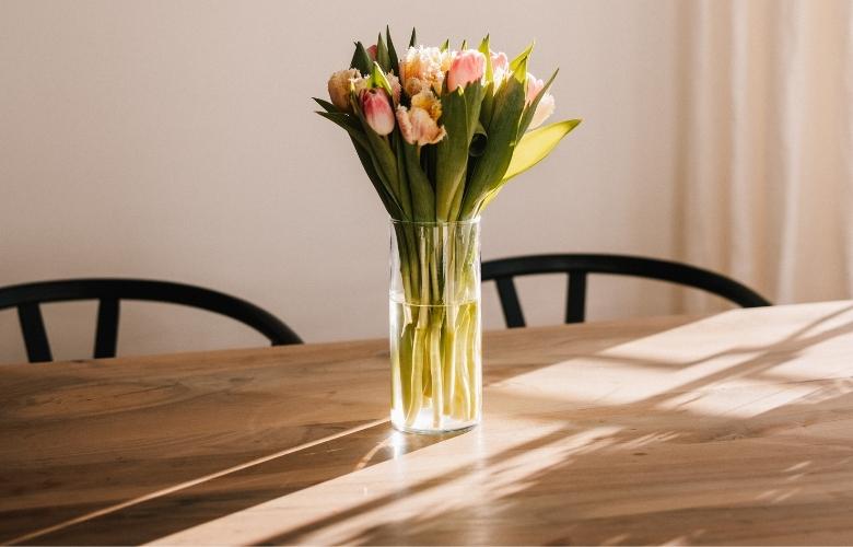 Tulipa: Significados e Como Cultivar? | westwing.com.br