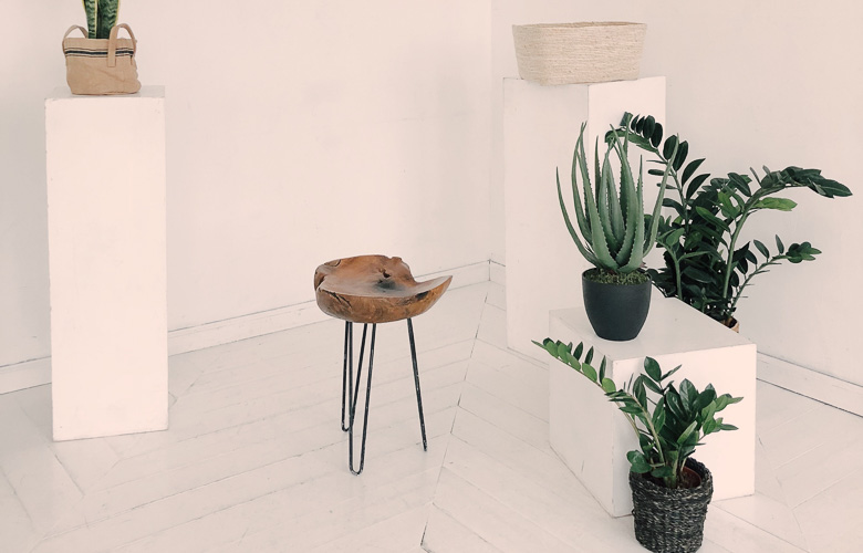 Vasos Diferentes para Plantas   westwing.com.br