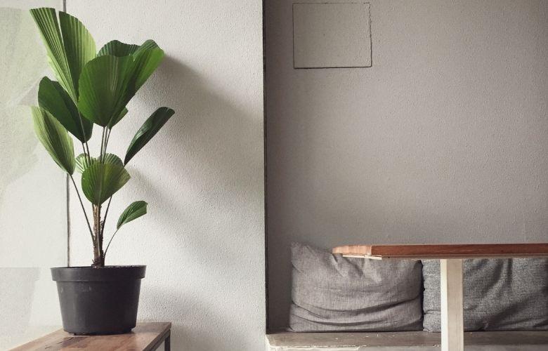 Vasos Plásticos para Plantas | westwing.com.br
