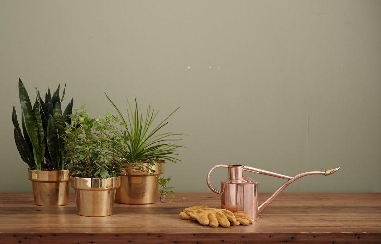 Jardins em Vasos   westwing.com.br