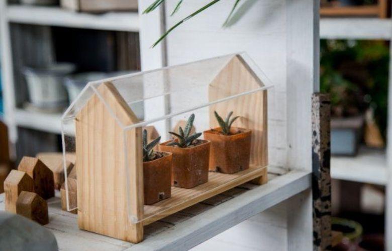 Mini Estufa para Plantas | westwing.com.br