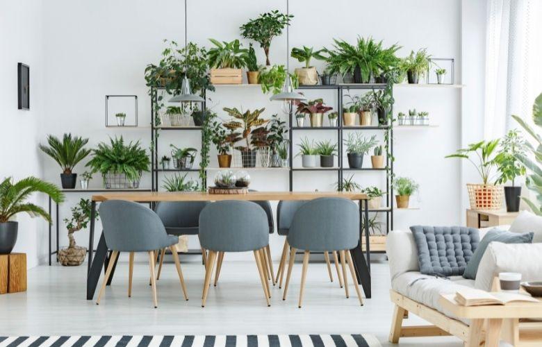 Prateleiras para Plantas   westwing.com.br