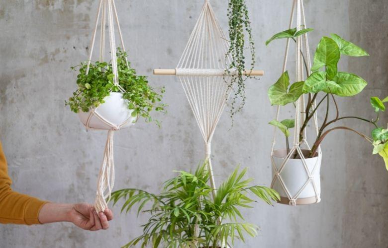Suporte para Vasos de Plantas | westwing.com.br