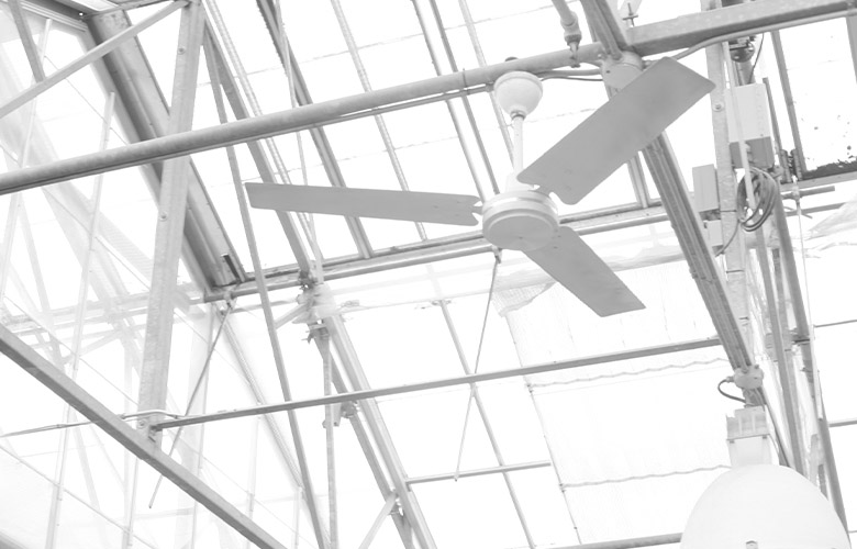 Ventilador Branco | westwing.com.br