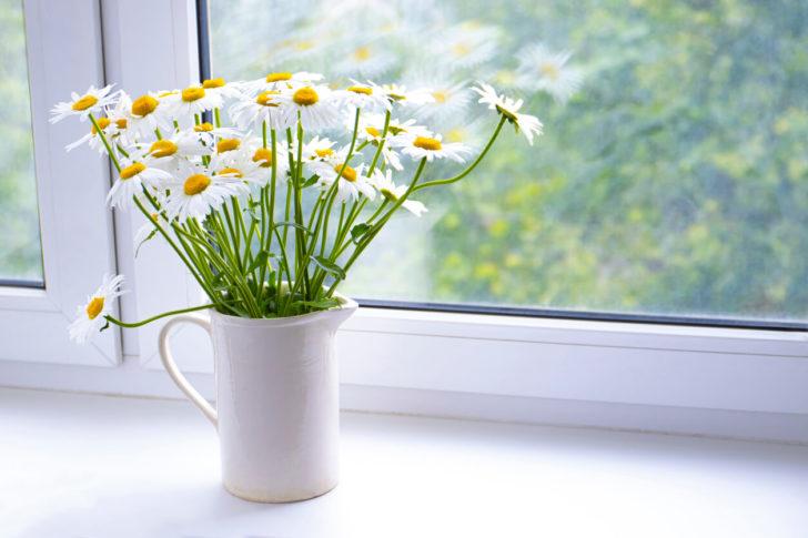 Flores do Campo | westwing.com.br