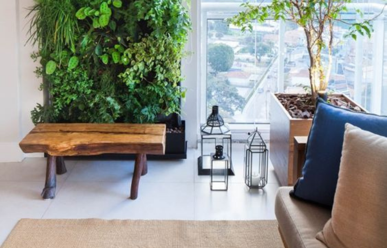 Plantas para Jardim Vertical | westwing.com.br