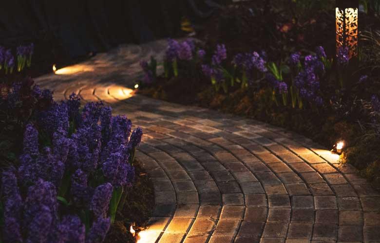caminho-de-jardim-iluminado-unsplash-c-a3187.jpg
