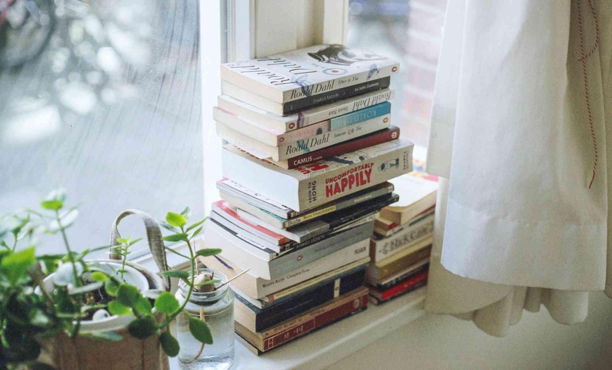 janela de quarto decorada com planta e objetos de leitura