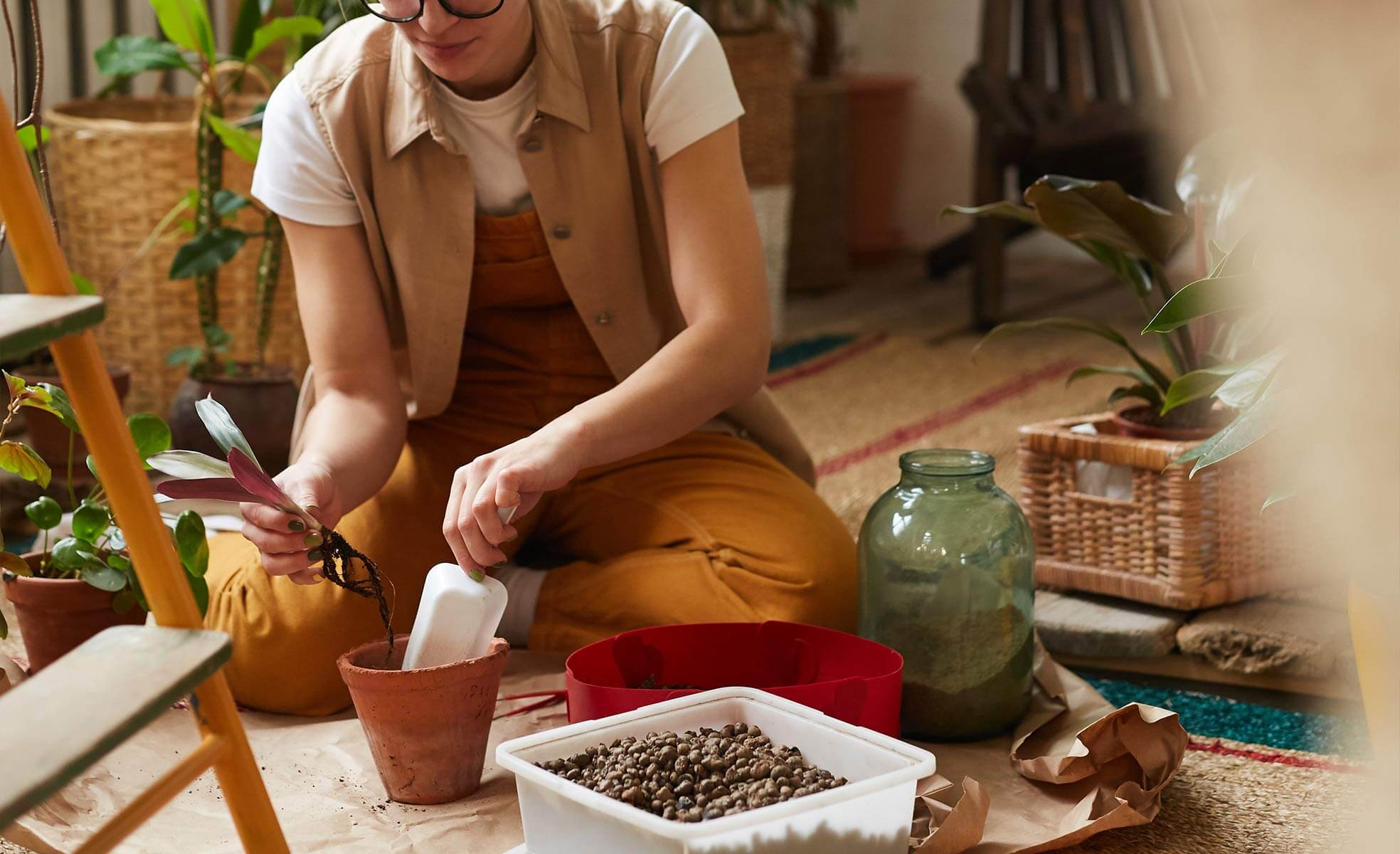 Que tipo de terra usar para plantas | westwing.com.br