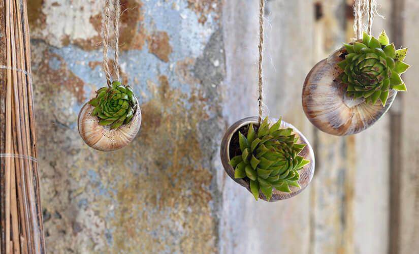 jardim suspenso com vasos | Westwing.com.br