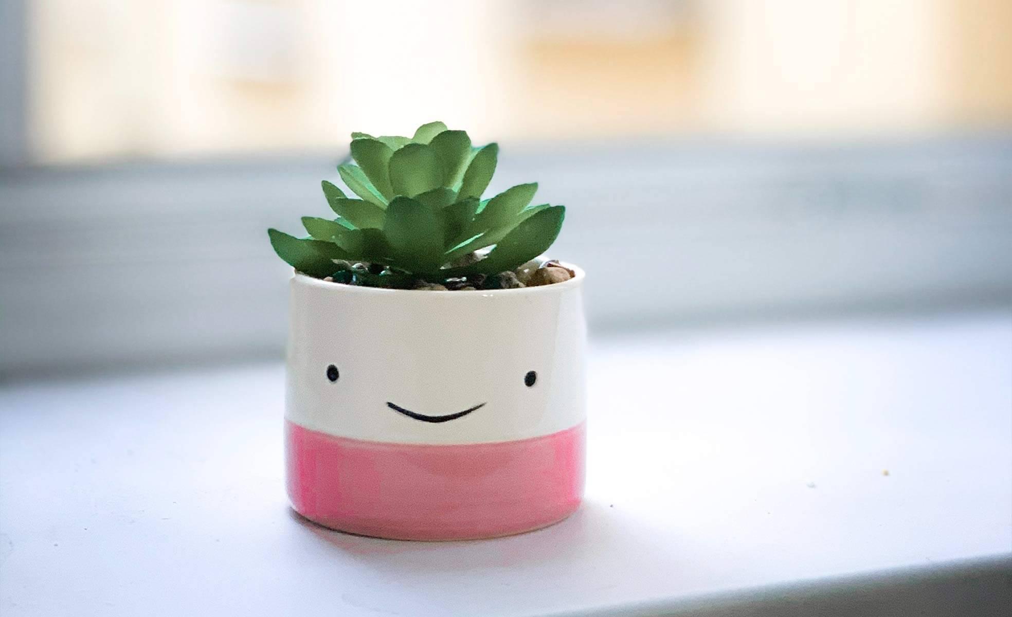 Tudo que você precisa saber sobre plantas | westwing.com.br