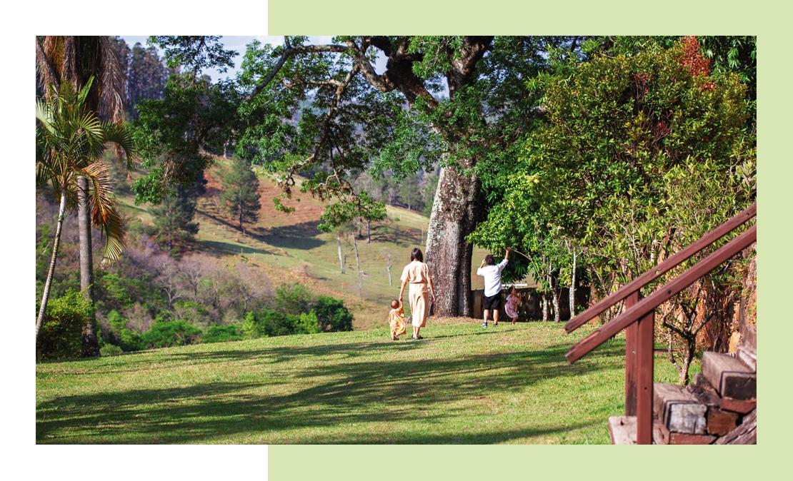 Foto da família no horizonte da fazenda que escolheram para morar, em que eles estão em uma frondosa árvore centenária