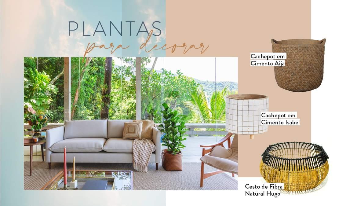 plantas para decorar, sala de estar, sofá, vaso com planta, cachepot | westwing.com.br