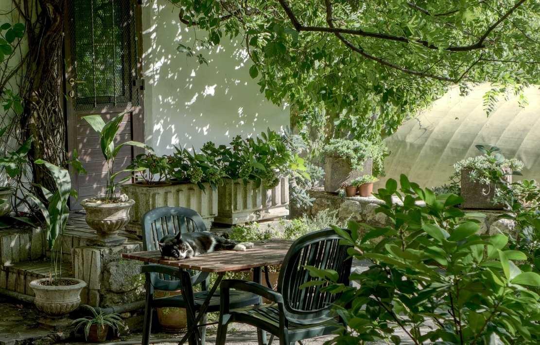 decoração de varanda com plantas e móveis de ferro, mesa de madeira, conjunto de varanda