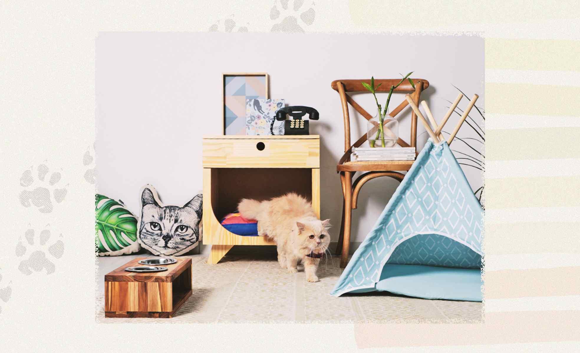 Como montar um cantinho para o pet?   Westwing.com.br